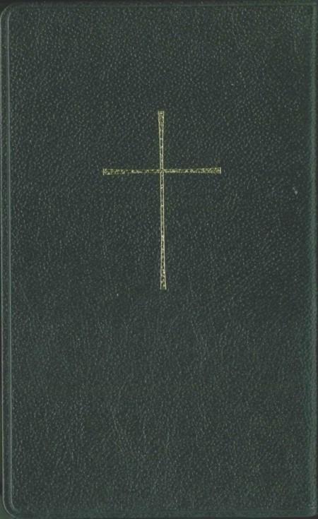 Bijbel in Perzisch - New Millennium Version (NMV) van leer en met goudsnede