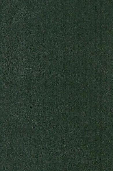 Nieuw Testament in Perzisch (TPV) en Engels (NIV)